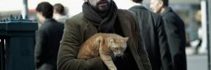 Ulises, el gato que observa a Llewyn Davis